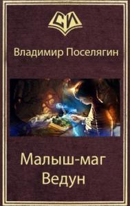 Владимир Поселягин - Ведун