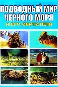 Евгения Искив - Подводный мир Черного моря