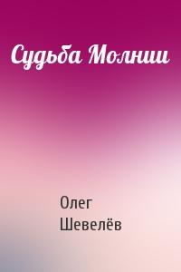 Судьба Молнии