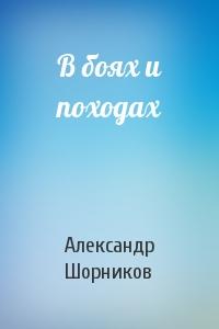 Александр Шорников - В боях и походах