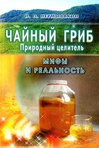 Чайный гриб — природный целитель. Мифы и реальность