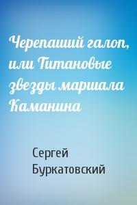 Черепаший галоп, или Титановые звезды маршала Каманина