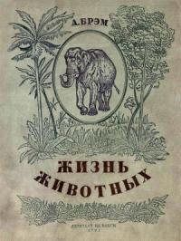 Жизнь животных в рассказах и картинках по А. Брэму