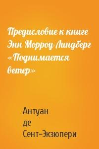 Предисловие к книге Энн Морроу-Линдберг «Поднимается ветер»