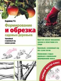 Формирование и обрезка садовых деревьев