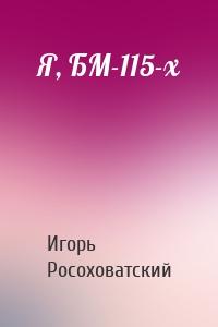 Я, БМ-115-х