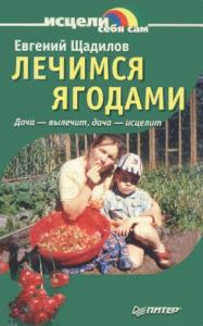 Евгений Щадилов - Лечимся ягодами. Дача — вылечит, дача — исцелит