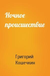 Григорий Кошечкин - Ночное происшествие