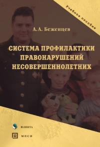 Александр Беженцев - Система профилактики правонарушений несовершеннолетних