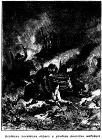 Луи Буссенар - Приключения в стране бизонов