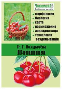 Раиса Григорьевна Ноздрачева - Вишня