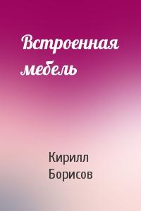 Кирилл Борисов - Встроенная мебель