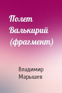 Владимир Марышев - Полет Валькирий (фрагмент)