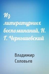 Из литературных воспоминаний, Н. Г. Чернышевский