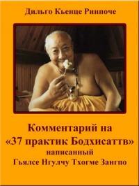 Комментарий на «37 практик Бодхисаттв»