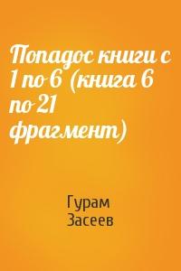 Попадос книги с 1 по 6 (книга 6 по 21 фрагмент)